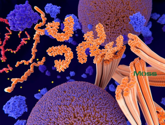 protein-tau-chan-doan-benh-alzheimer-tech-moss-1.jpg